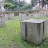 """""""Glasgow Roots"""", Sunken Garden, BellahoustonPark"""