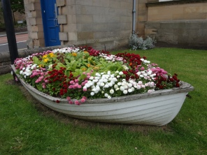North Berwick flowers