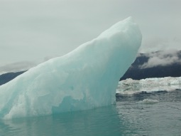 Prince William Sound Sea kayaking at Columbia Glacier
