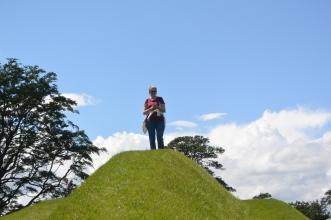 Life Mounds