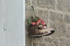 Newlyn hanging basket