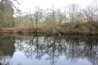 River Forth at Easter Park