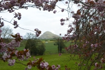 View of North Berwick Law