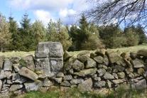 Refuge stone