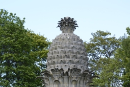 Dunmore Pineapple