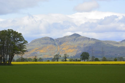 Fields near Dunmore