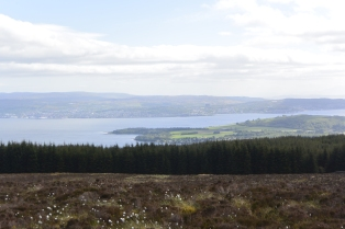 Clyde view