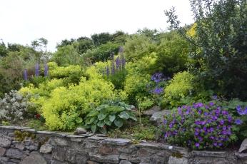 Busta House Garden