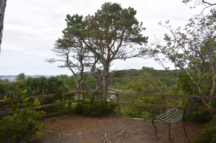 High Viewpoint, Inverewe