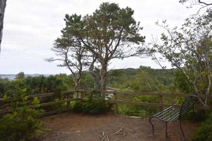 High Viewpoint, Inverewe