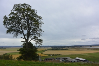 View to the Forth