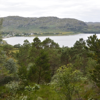 Loch Ewe view