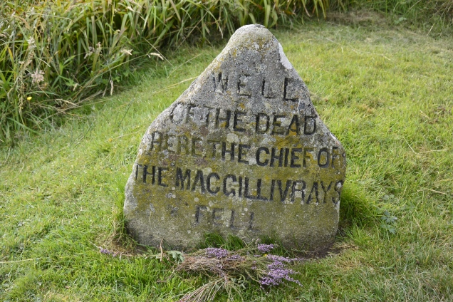 Here the Chief of MacGillivrays fell