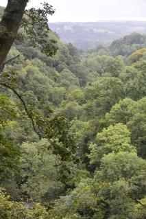 Nethan Gorge