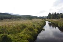 Carron River