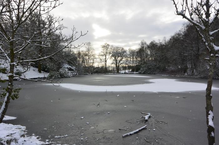 Craigend Pond