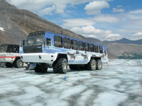 Icefield Explorer tour