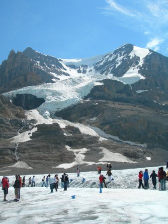 Icefield Explorers tour