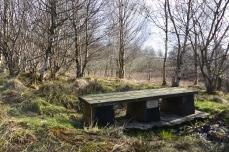 Billy's bench