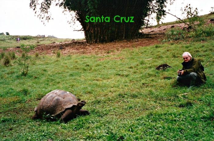 Giant tortoise and John