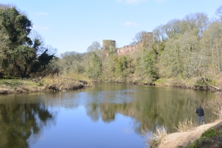 River Clyde at Bothwell Castle