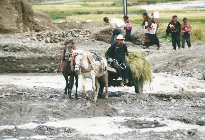 Tibetan villagers
