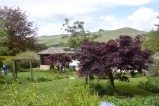 The Willows, Muckhart