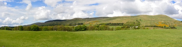 Muckhart view