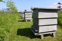 Beehives by Ian Hamilton Finlay