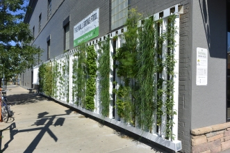 This wall grows food