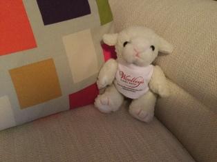 Woolley Lamb