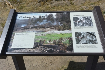 Cooking Hillside