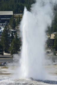 Old Faithful from Observation Hill
