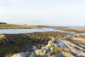 Harbour at Fife Ness