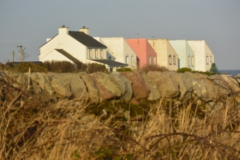Colourful cottages near Crail