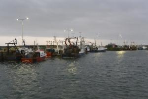 Pittenweem Harbour