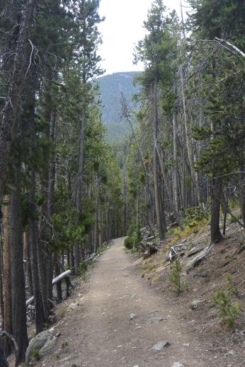 Basin Lake trail