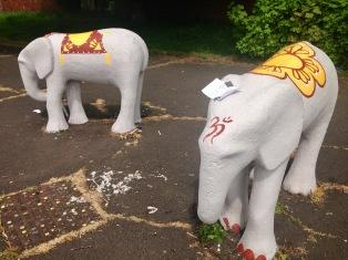 Elephant Park, Maryhill