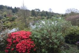 Glenwhan Gardens