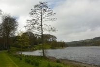 Black Loch and viewpoint