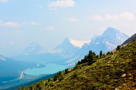 Bow Lake Lookout trail