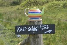 Kerrera teapots