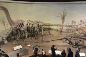 Royal Tyrrell Museum of Palaeontology