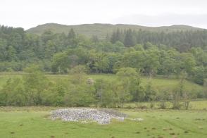 Glebe Cairn