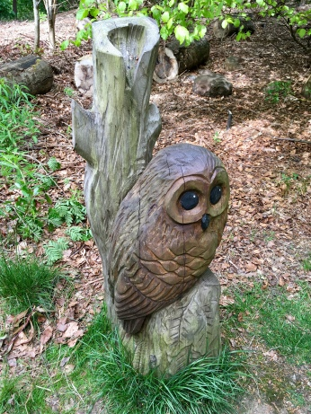 Cairnhill Woods