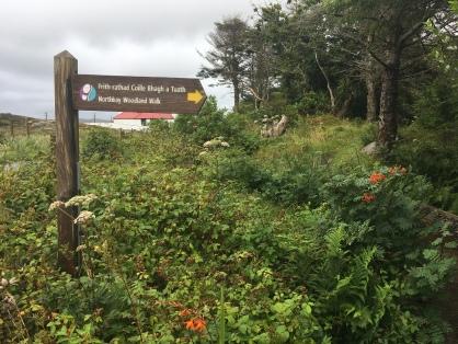 Northbay Woodland Walk