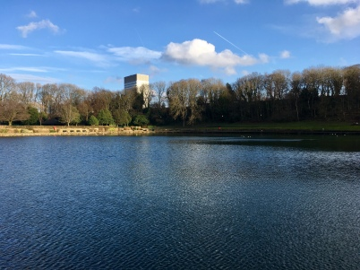 Arts Tower from Crookes Valley Park