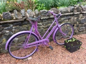 Nurse Peattie's bicycle