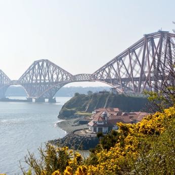 Forth Bridge view