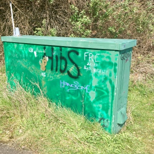 Hibs graffiti